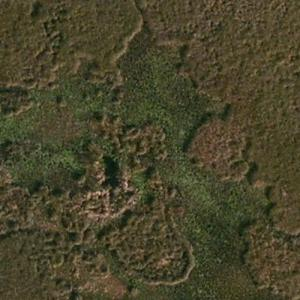 ValuJet Flight 592 crash site (Bing Maps)