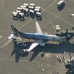 """Boeing 737 """"Spirit of Alaska Statehood"""" (Birds Eye)"""