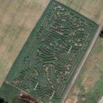 Maze in Woburn Safari Park (Bing Maps)