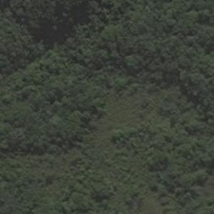 Transbrasil Flight 303 crash site (Bing Maps)
