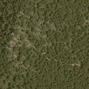 Iberia Airlines Flight 602 crash site (Bing Maps)