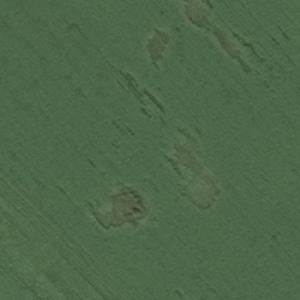 Pushkin Soviet Navy Tu-104A crash site (Bing Maps)