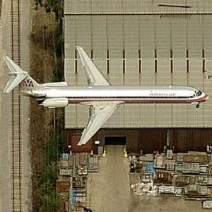 American Airlines McDonnell Douglas MD-80 (Birds Eye)