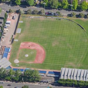 Royal Athletic Park (Birds Eye)