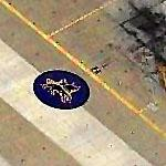 "VF-213 ""Blacklions"" Squadron Insignia at Oceana (Birds Eye)"