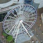Birmingham Wheel (Birds Eye)