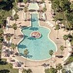 Guitar shaped pool (Birds Eye)