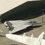 F-14A Tomcat (Birds Eye)