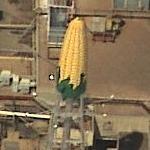 Corn water tower (Birds Eye)