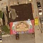 Buddha Mural (Birds Eye)