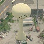 Smiley face water tower (Birds Eye)