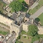 Lincoln Castle (Birds Eye)