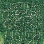 Eugster's farm maze