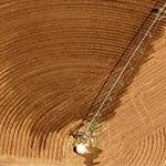 Circular irrigation