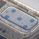 Roller hockey rink (Birds Eye)