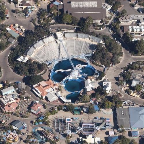 'Dolphin Discovery' show at Sea World (Birds Eye)