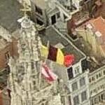 Belgian flag (Birds Eye)