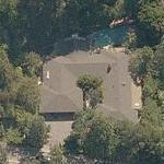 Billy Dee Williams' House (Birds Eye)