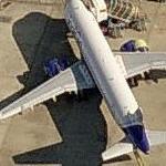 IndiGo Airlines - Airbus A320-232 (Birds Eye)