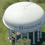 'Think - Hammond'