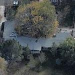 Tippi Hedren's House (Birds Eye)
