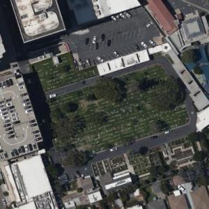 Westwood Village Memorial Park (Bing Maps)