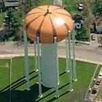 Pumpkin Water Tower (Birds Eye)