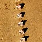 Cadillac Ranch (Bing Maps)