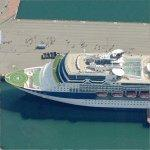 Celebrity Cruises' ship 'Infinity' (Birds Eye)