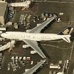 """Singapore Airlines Boeing 747 """"Star Alliance"""" paint scheme (Birds Eye)"""