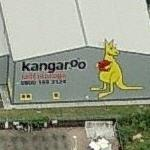 Kangaroo (Birds Eye)
