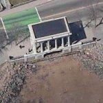 Plymouth Rock (Birds Eye)