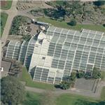 The Princess of Wales Conservatory at Kew Gardens (Birds Eye)