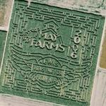 May Farms Maze