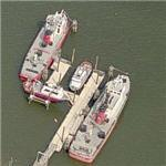 Fire boats (Birds Eye)