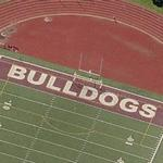 'Bulldogs' (Birds Eye)